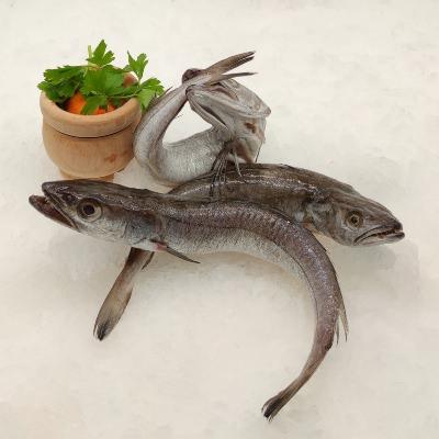 comprar pescadilla online