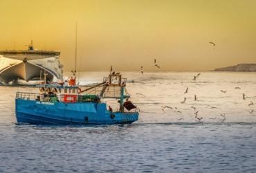 pescar de forma sostenible