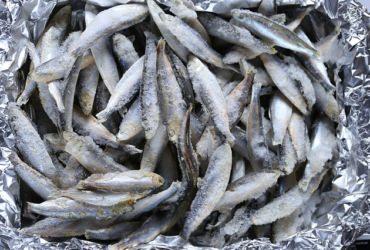 se puede volver a congelar el pescado
