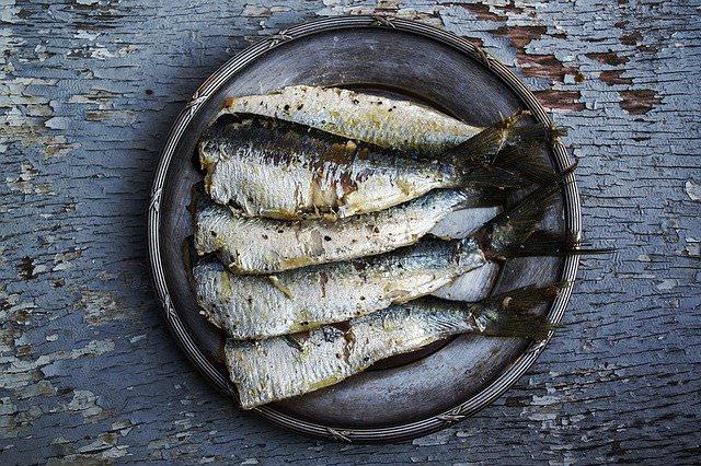 pescado azul y omega 3